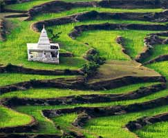 Tour Package In Mussoorie